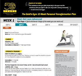 Diet Chart / Workout Planner, Gold's Gym - Malleshwaram, Bangalore, Malleshwaram - Bangalore